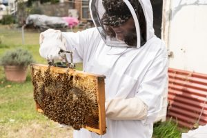 beekeeping workshop photo