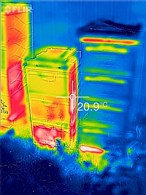 Beehive thermal photo